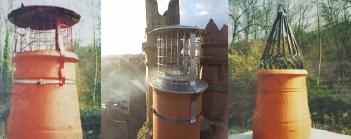 Bird Guards