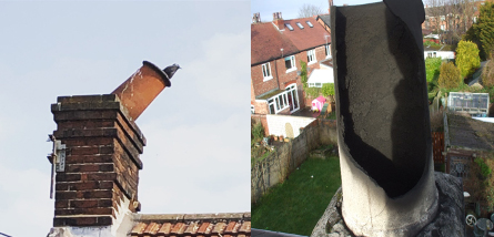 Bird in Chimney Pot